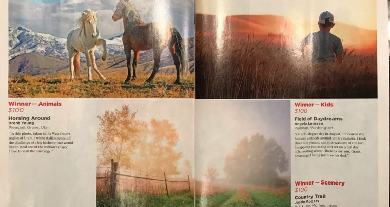 2017 Country Life Magazine Photo Contest Category Winner