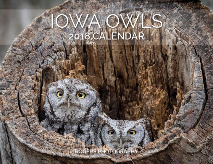 2018 Calendar: Iowa Owls