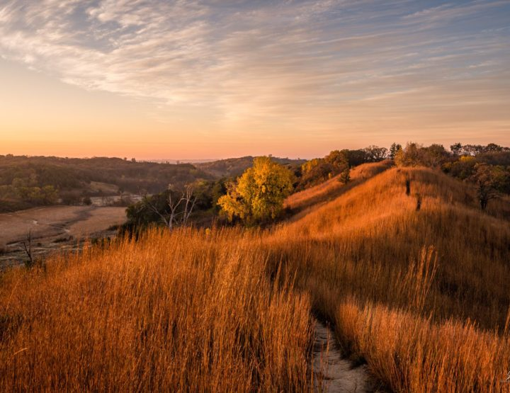 Fall Color in Iowa's Loess Hills Workshop